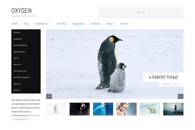 Oxygen wordpress responsive theme