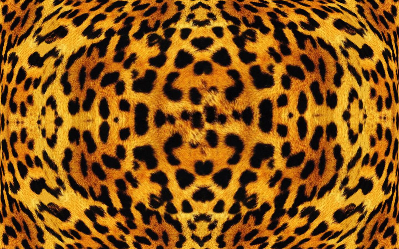 African Leopard Texture