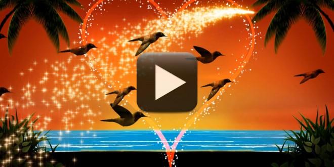 123 video magic green screen background software free