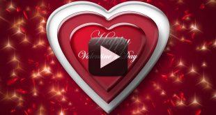 Happy Valentine Day Wishes Video Background Free Download