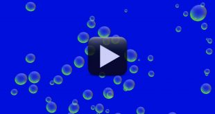 Free Oil Bubbles Background Video-Blue Screen