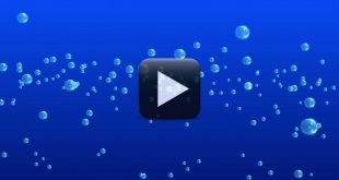 Free Bubbles Background Video