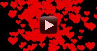 Free Download Love Motion Background 1080p
