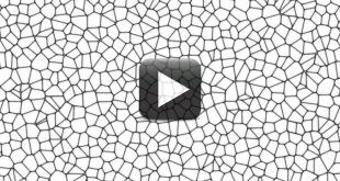 Seamless Pillow Cell Pattern Animated Background Video