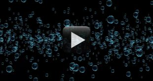 Water Bubbles Video Free Download