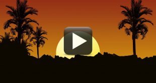 Sun Set HD Videos 1080p-Free Video Background