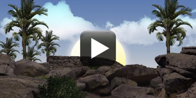 Sunrise Background Video Effects HD-Free Download