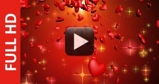 Animated Love Hearts Motion Effect Video