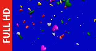 Multi-Color Hearts Falling Video Background in Blue & Green Screen Effects