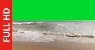 Free Download Ocean Waves Green Screen Effect at the Beach
