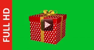 Gift Box Green Screen Royalty Free Footage
