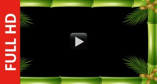 Bamboo Video Frame Free Download