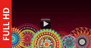 Free HD Motion Graphics of Wedding Background Video Effect