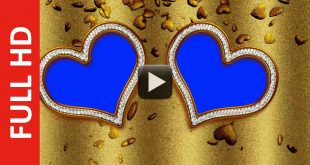 Gold Wedding Background Motion Video Effect