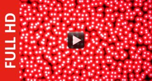 Motion White Dots Background in Red Stroke