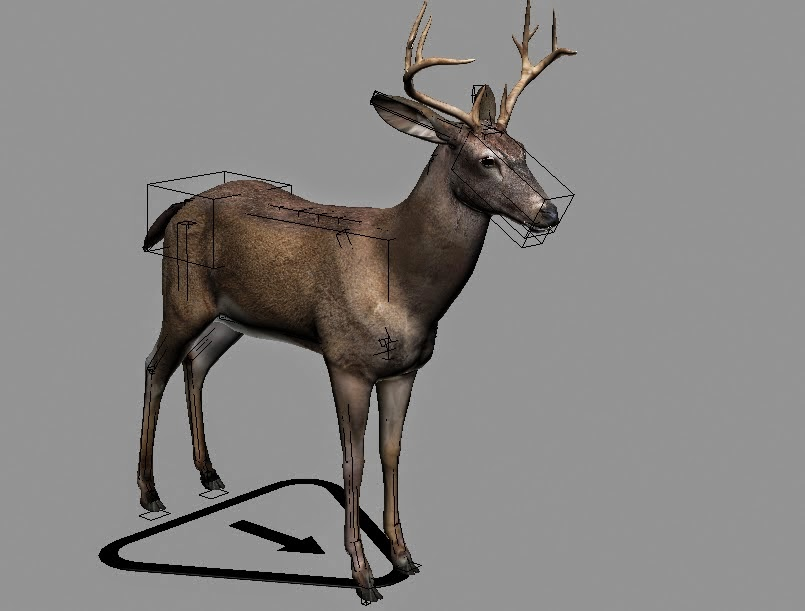 Deer Rigged 3d Models on orange juice cartoon character