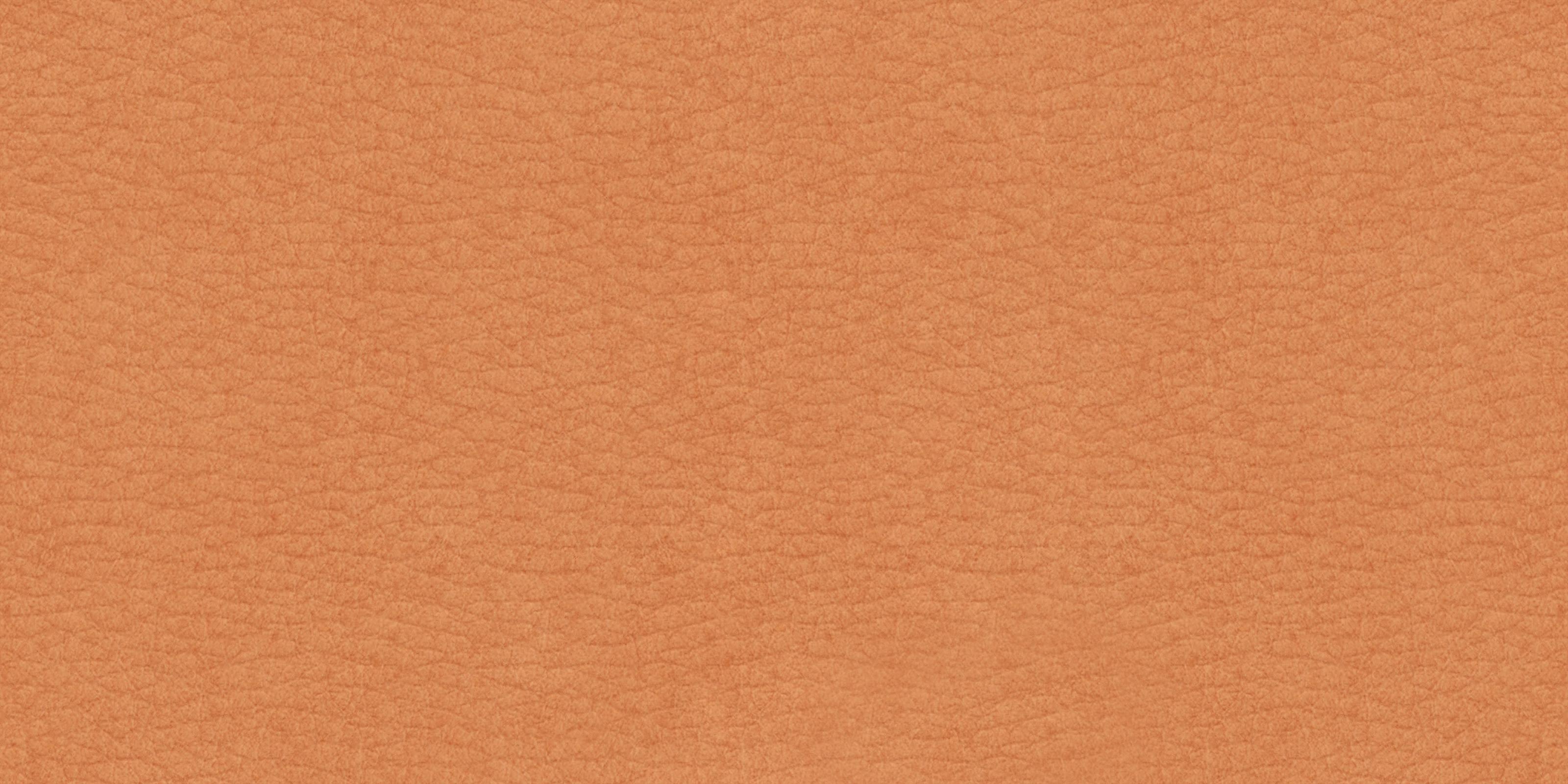 Free Skin Texture