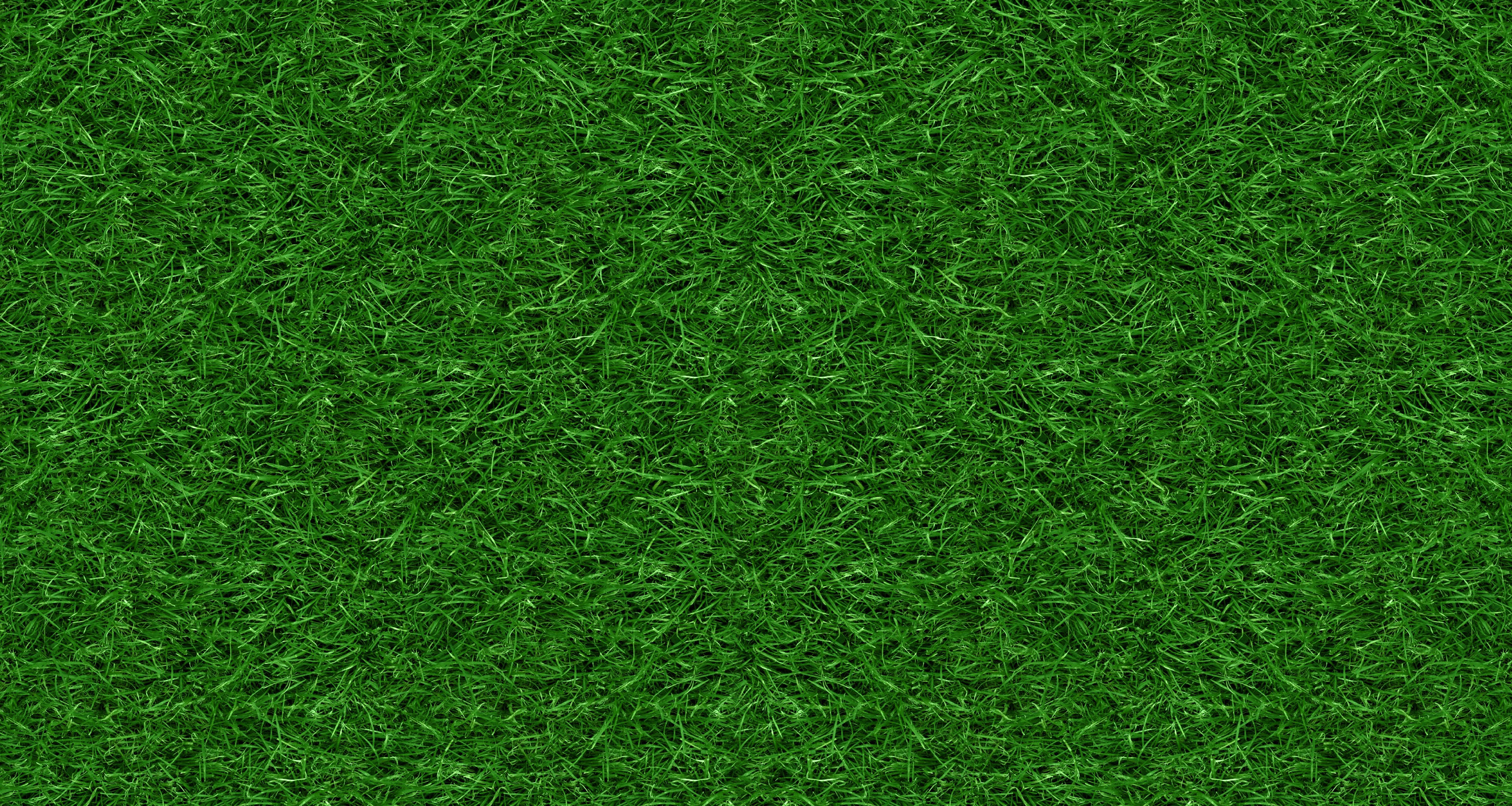 Green Ground Texture