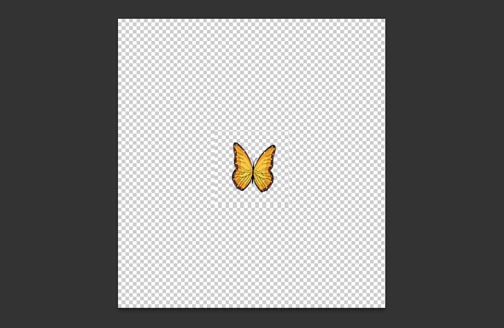 Animated-Butterfly-in-Photoshop-1