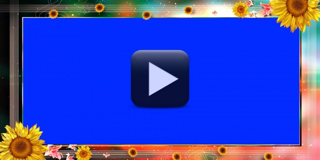 Wedding Background Frame Video Free Download In Hd All