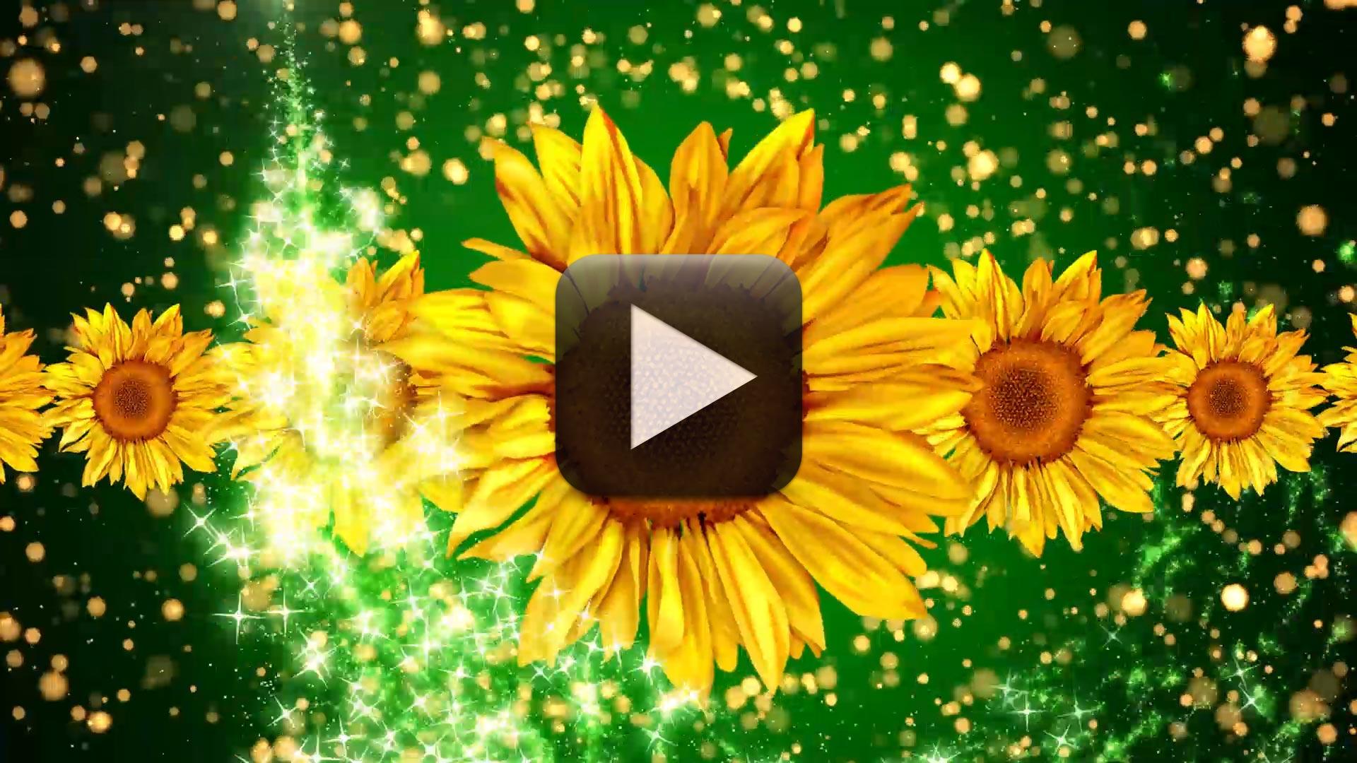 Free Wedding Motion Background Loop 1080p Full HD