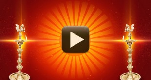 Happy Wedding Title Background Video-Free Download