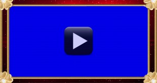 Premium Wedding Frame Video-Free Download