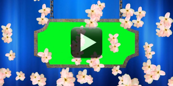 Wedding Video Background Animated Flowers Falling All
