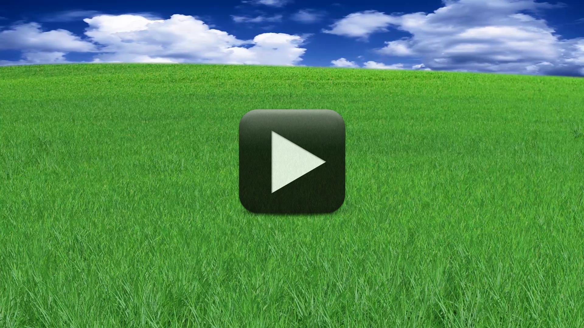 Beautiful Nature Grass Animation Background