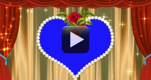 Wedding Background Video Effects High Definition Video