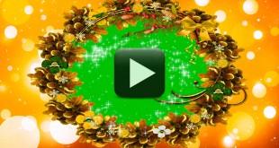 Wedding Background Video-Free Green Screen Frame