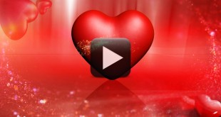 Wedding Motion Background Video Full HD