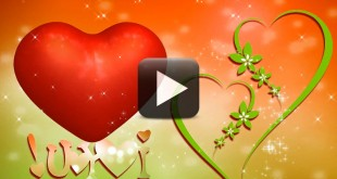 Wedding Motion Backgrounds-Love Heart Animation