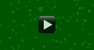 Animated Bubbles Video Background-Green Screen Video