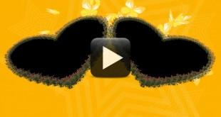 Animated Roses Video-Wedding Frame background