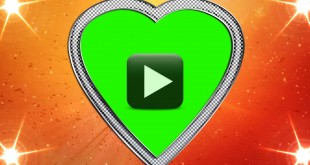 Love and Weddings Motion Background Video