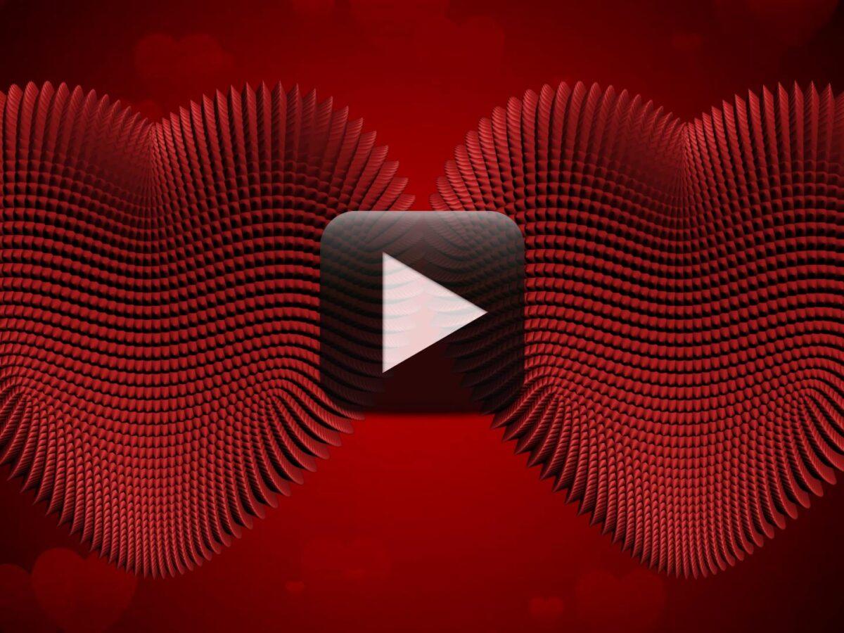 Free Download Hd Heart Wedding Album Frames Background All Design Creative