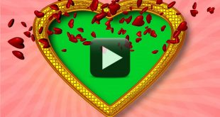 Marriage Anniversary Greetings Frame Video