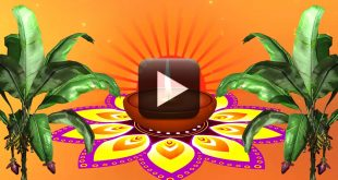 Festival Motion Graphics Video Background