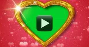 Heart frame wedding footage background green screen effect