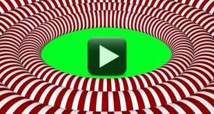 Motion Wedding Frame Video-Circles Hypnotic Animated Background