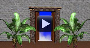 Wedding Background Video-Free Download