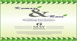 wedding invitation card cover vector thumb