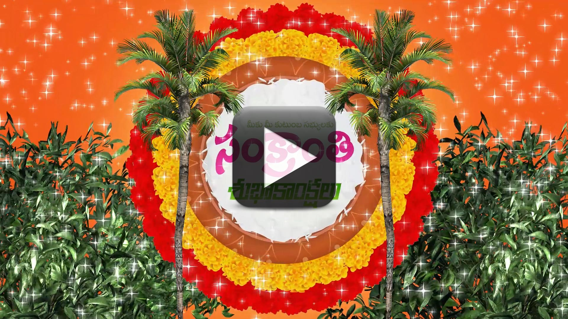 Wish You a Happy Sankranthi & Pongal Animated Background Video