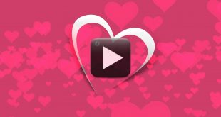 I Love You Animated Videos | Happy Valentine Day Background Video Animation