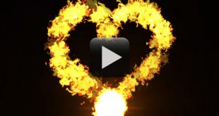 Heart Shape Fire Effect Free Download-Love Flame Video