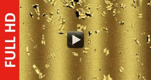 Gold Stars Animation Free Download
