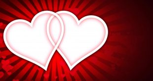 LOVE Animation Background HD