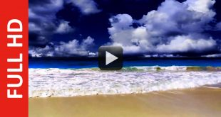 Sea or Ocean Nature Background Video