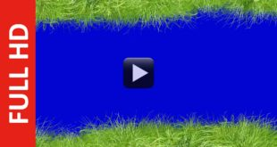 Grass Frame Background in Blue Screen